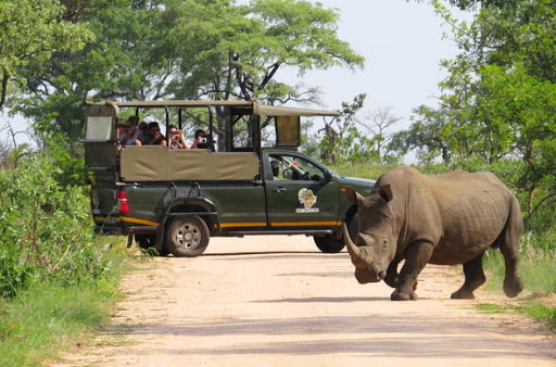 The Penwell Safaris Experience and what to know from there